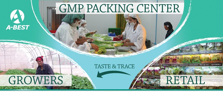 GMP Packing Center by A-Best